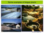 some examples of biogas plants