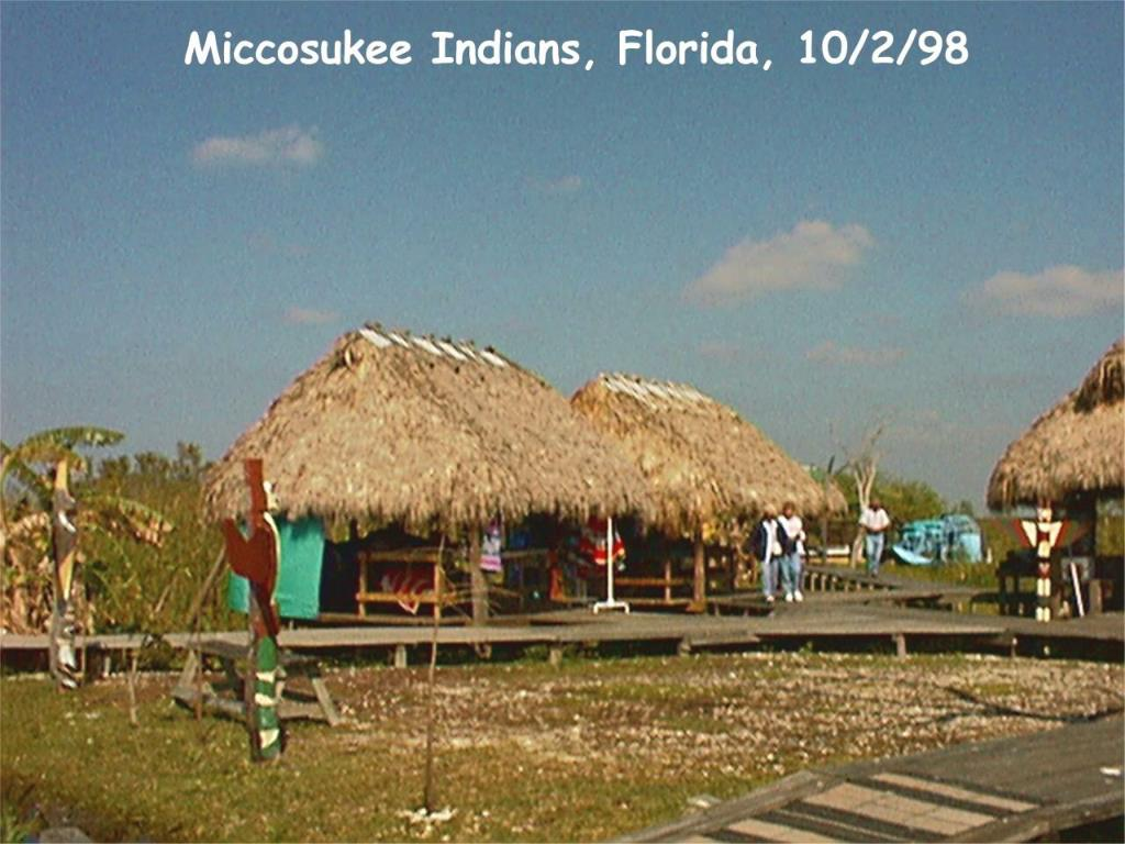 Miccosukee Indians