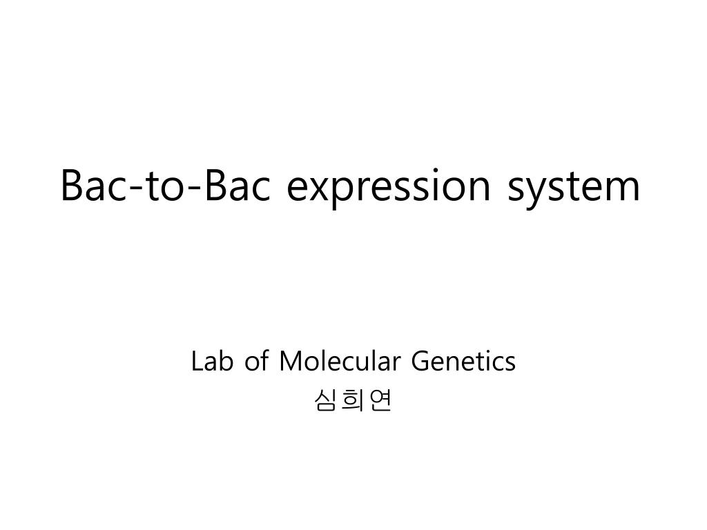 PPT - Bac-to-Bac expression system PowerPoint Presentation
