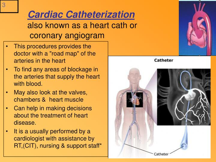PPT - CORONARY ANGIO CARDIAC CATH & Ablation Procedures Lecture # 3 ...