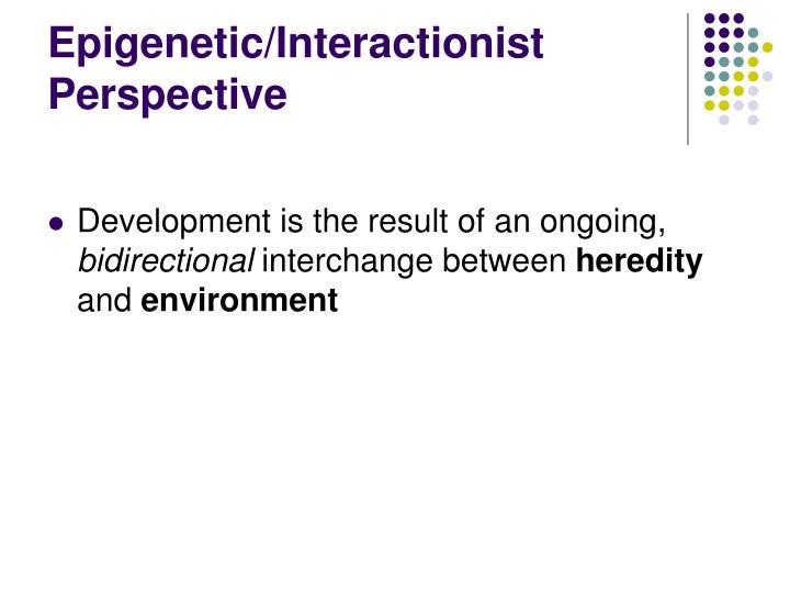 Epigenetic/Interactionist Perspective