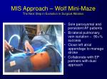 mis approach wolf mini maze the next step in evolution in surgical ablation