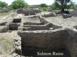 salmon ruins