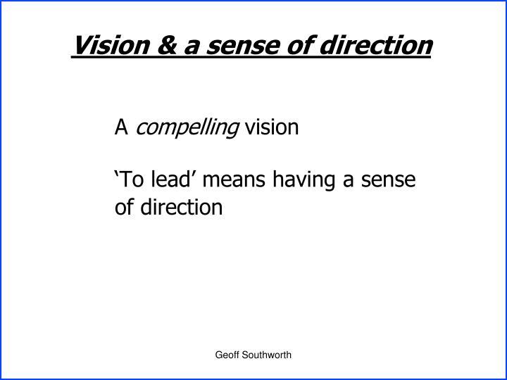 Vision & a sense of direction