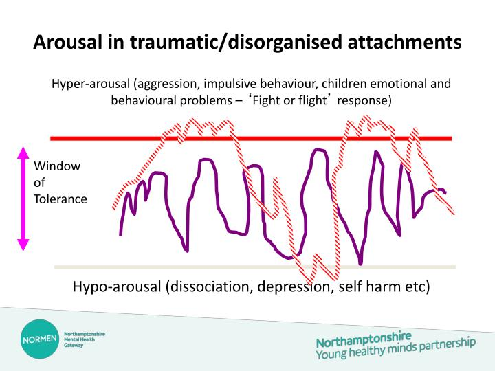 Arousal in traumatic/disorganised attachments