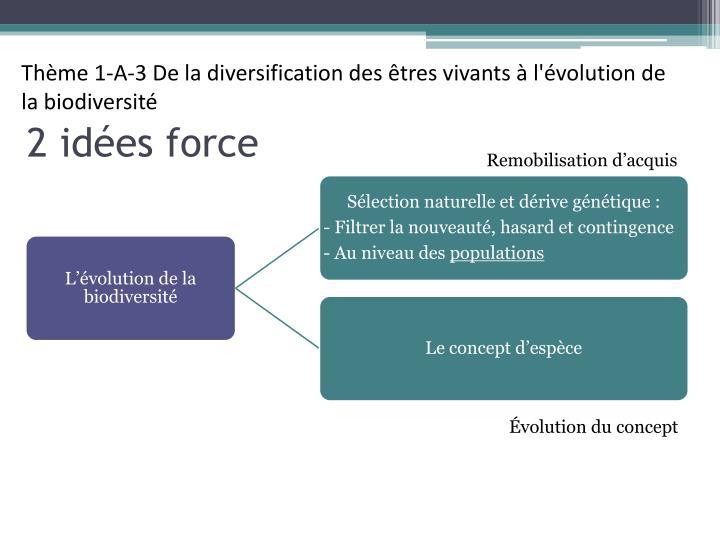 Thème 1-A-3 De la diversification des êtres vivants à l'évolution de la biodiversité