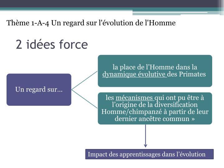 Thème 1-A-4 Un regard sur l'évolution de l'Homme