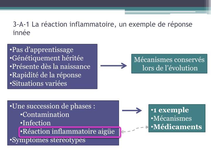 3-A-1 La réaction inflammatoire, un exemple de réponse innée