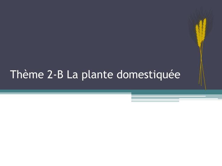 Thème 2-B La plante domestiquée