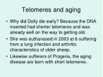 telomeres and aging2
