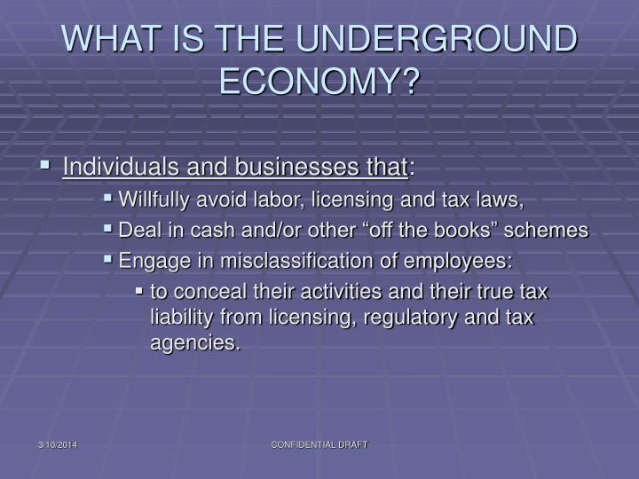 What is the underground economy