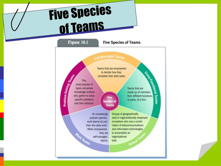 Five Species               of Teams