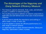 the advantages of the nagurney and qiang network efficiency measure