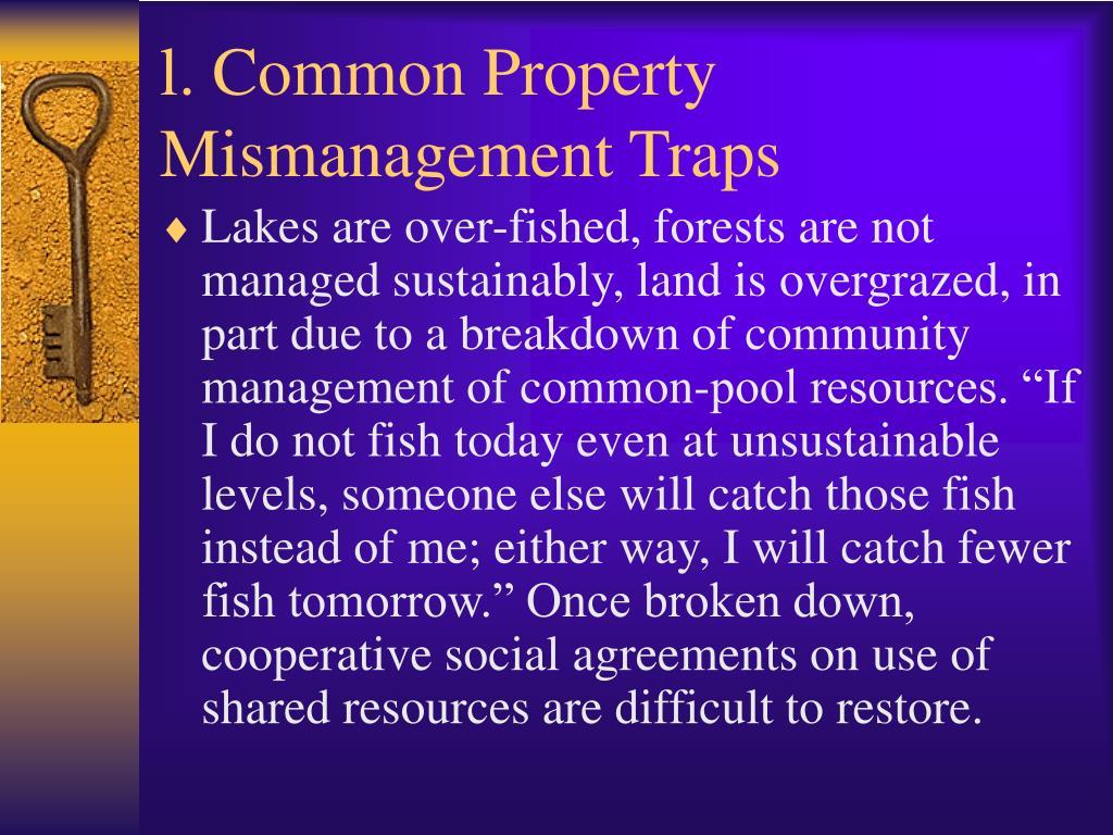 l. Common Property Mismanagement Traps