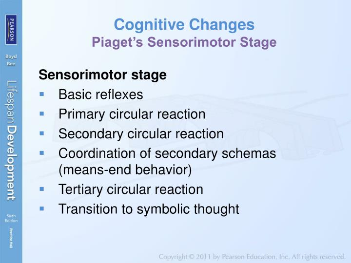 piagets sensorimotor stage of cognitive development