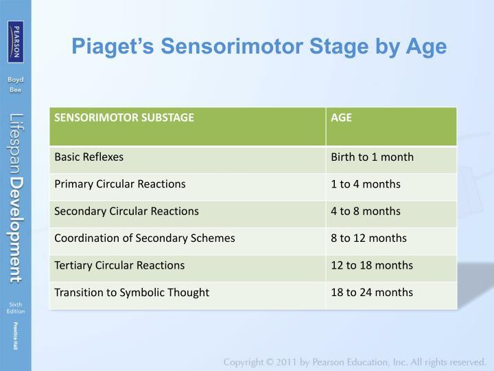 sensorimotor stage 4