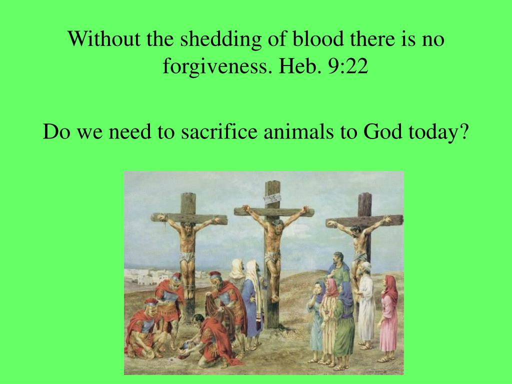 Without the shedding of blood there is no forgiveness. Heb. 9:22