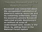 theodore roosevelt and the modern presidency18