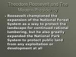 theodore roosevelt and the modern presidency24