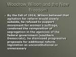 woodrow wilson and the new freedom12