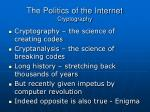 the politics of the internet cryptography