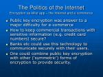 the politics of the internet encryption as killer app the internet and e commerce