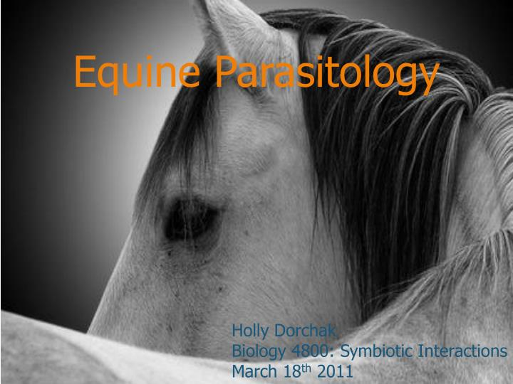 equine parasitology n.