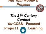 not your mother s projects