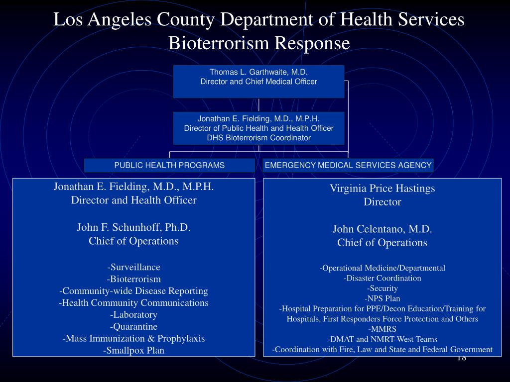 Los Angeles County Department of Health Services