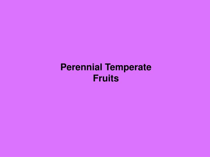 perennial temperate fruits n.