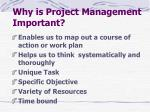 why is project management important