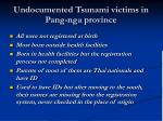 undocumented tsunami victims in pang nga province