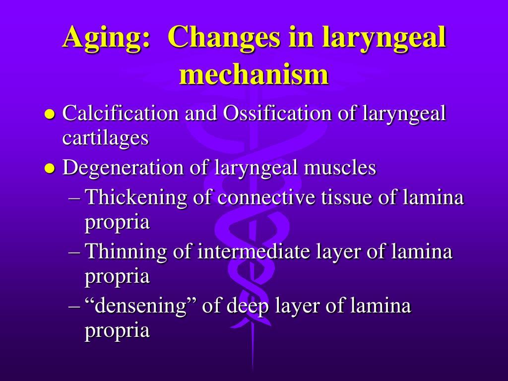 Aging:  Changes in laryngeal mechanism