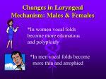 changes in laryngeal mechanism males females