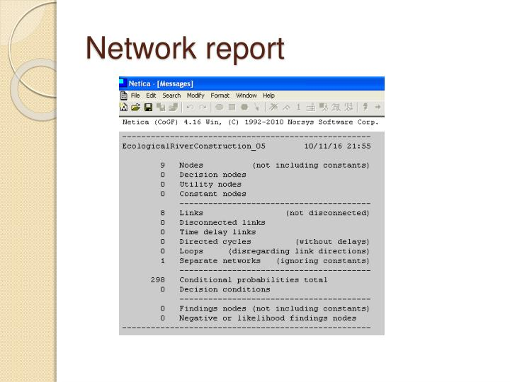 Network report