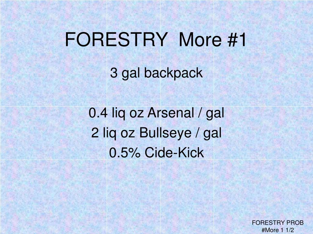 FORESTRY  More #1