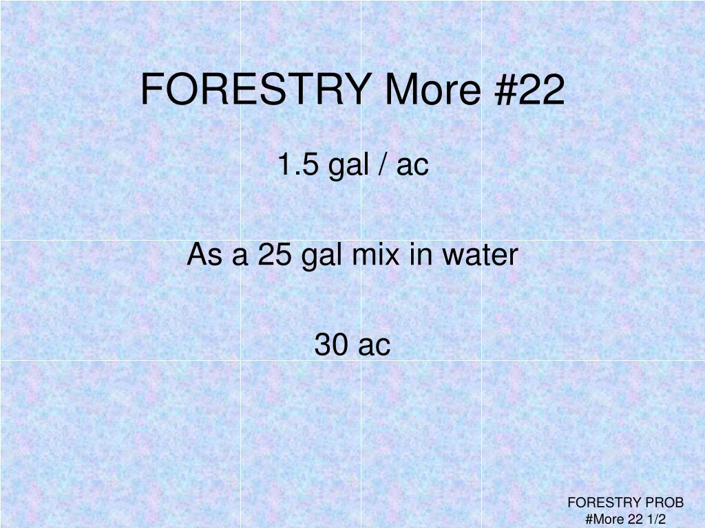 FORESTRY More #22