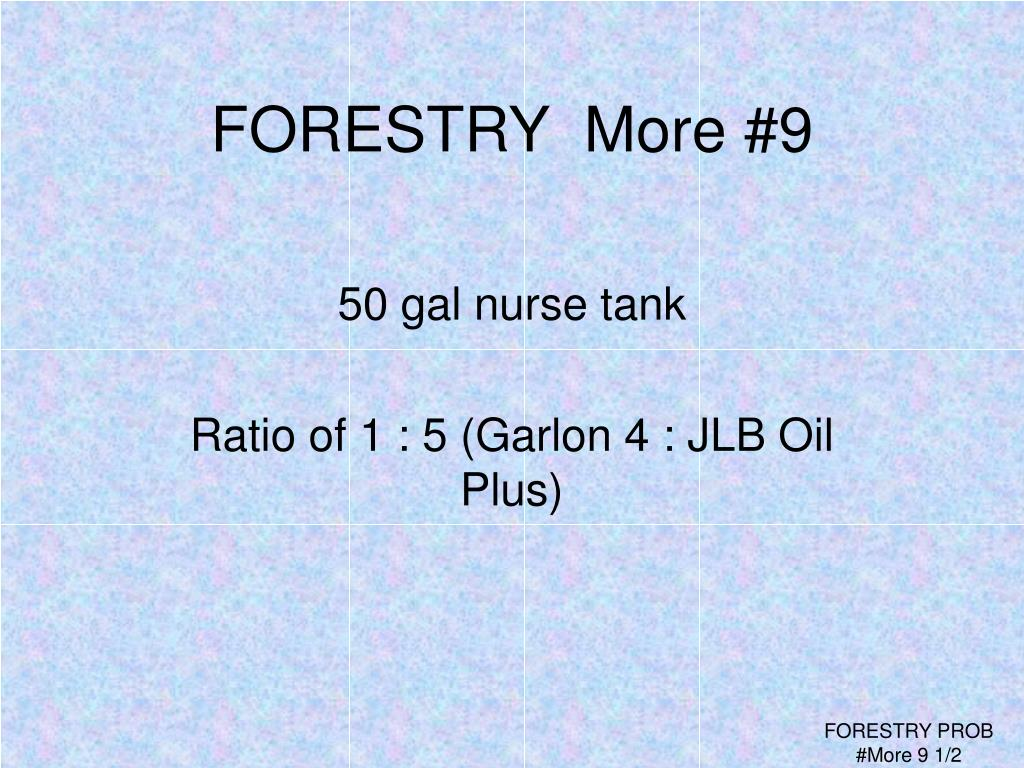 FORESTRY  More #9