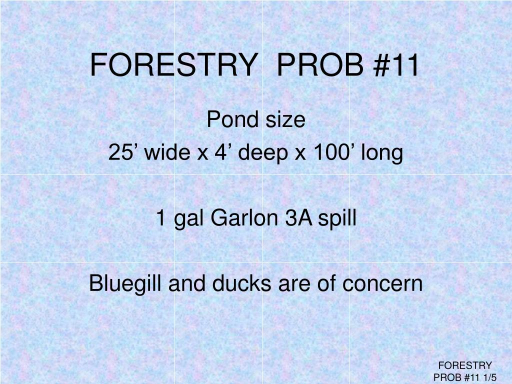 FORESTRY  PROB #11
