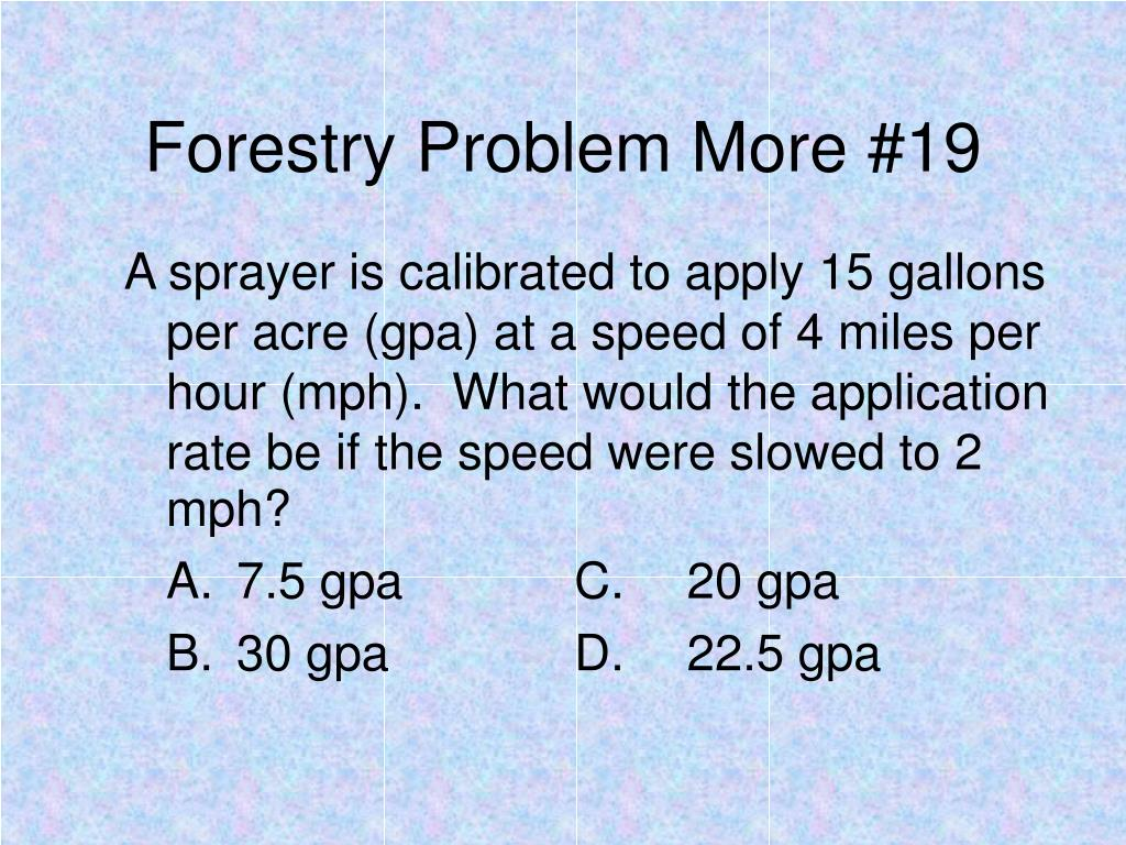 Forestry Problem More #19