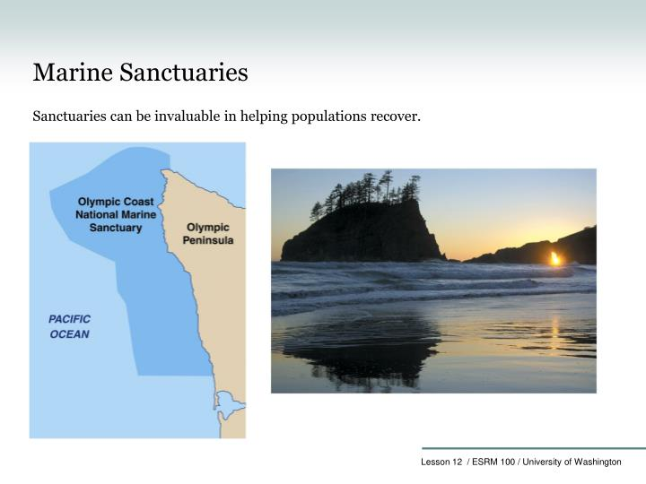Marine Sanctuaries