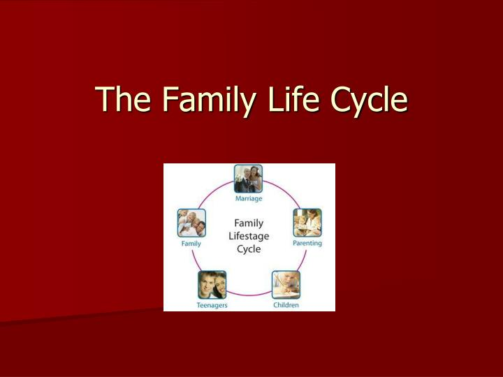the family life cycle n.