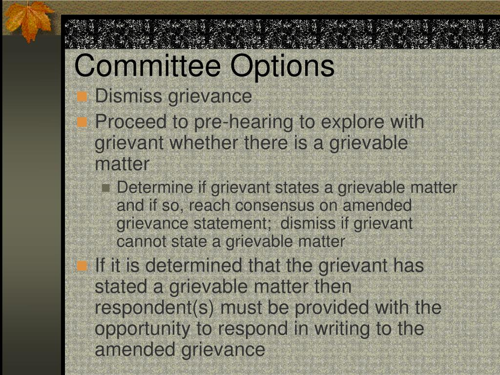 Committee Options