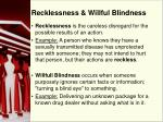 recklessness willful blindness