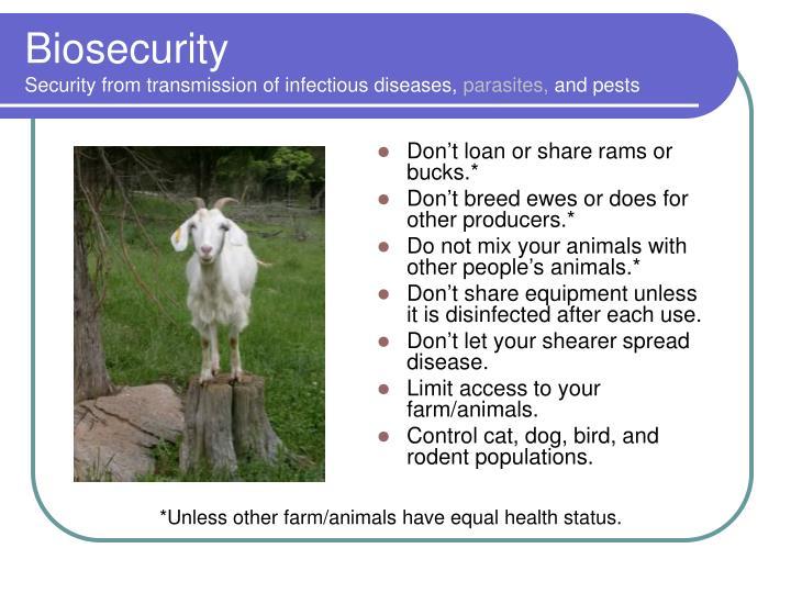 Don't loan or share rams or bucks.*