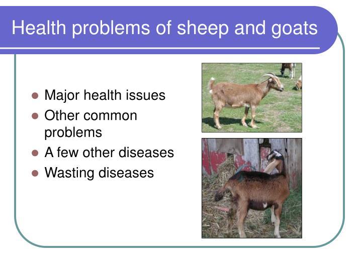 Major health issues