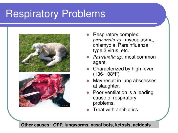 Respiratory complex: