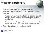 what can a broker do