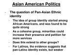 asian american politics15