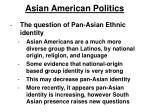 asian american politics16